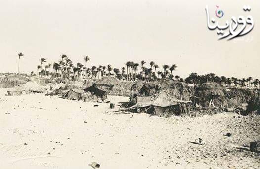 Photo of بنغازي زرايب اللثامة