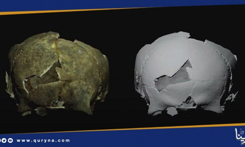 Photo of اكتشاف جمجمة شاب تعود للألفية الثالثة في روسيا