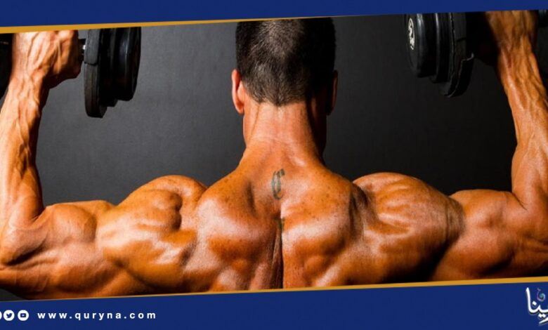 Photo of تمارين لتقوية عضلات الكتف