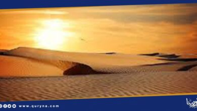 Photo of العثور على 1.8 مليار شجرة فى الصحراء الكبرى