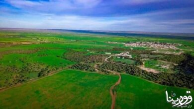 Photo of الطبيعة الجبل الأخضر