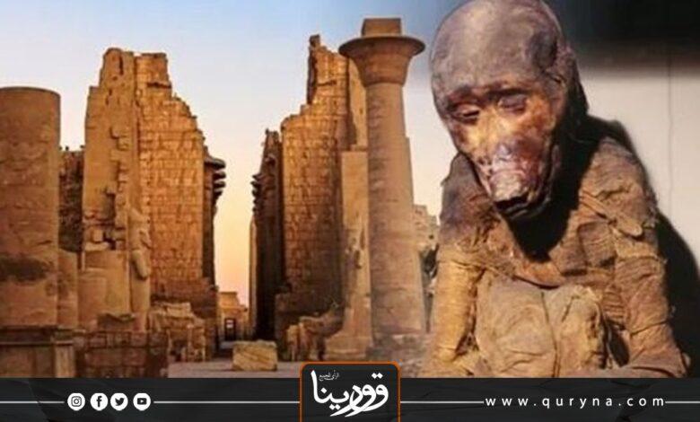 """Photo of بعد مئات السنوات.. قرد يحل لغز بلاد """"البنط"""" الفرعونية المفقوة"""