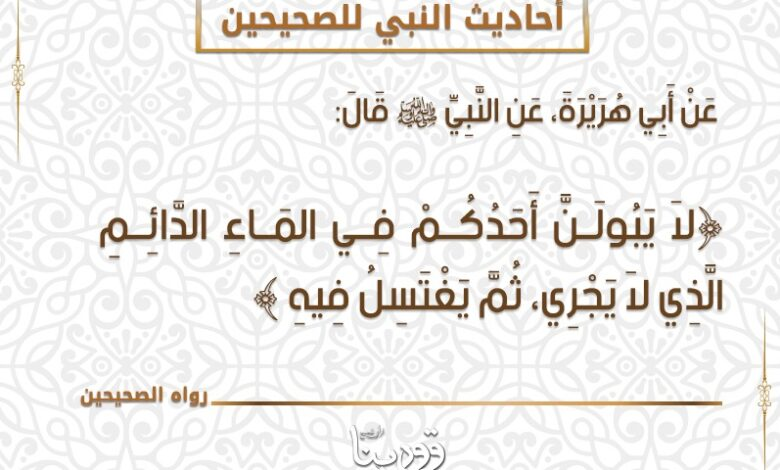 Photo of أحاديث النبي للصحيحين