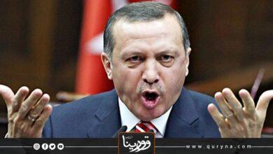 Photo of دعوات تركية بالاتحاد لمواجهة ديكتاتورية أردوغان وحزبه