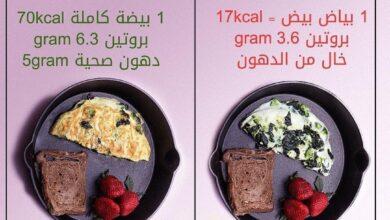 """Photo of """"دهون صحية تشعرنا بالشبع"""" .. تعرف على فوائد تناول البيضة كاملة"""