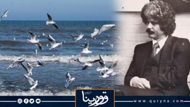 Photo of قصة قصيرة النوارس.. للراحل خليفة الفاخري