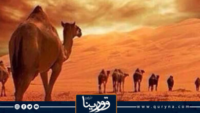 Photo of إكرام الضيف