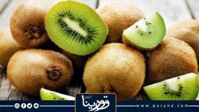 Photo of فوائد الكيوي لمرضى السكري