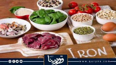Photo of 10 اغذية غنية بالحديد يمكنك تناولها وأهمية الحديد