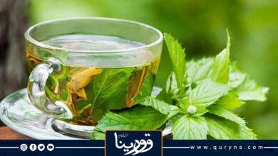 Photo of دراسة تكشف فوائد 3 أنواع من الشاي تقلل من التعرض لمخاطر صحية
