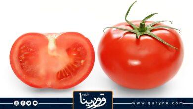 Photo of أخصائية روسية توصي بعدم تناول هذه المواد الغذائية مع الطماطم