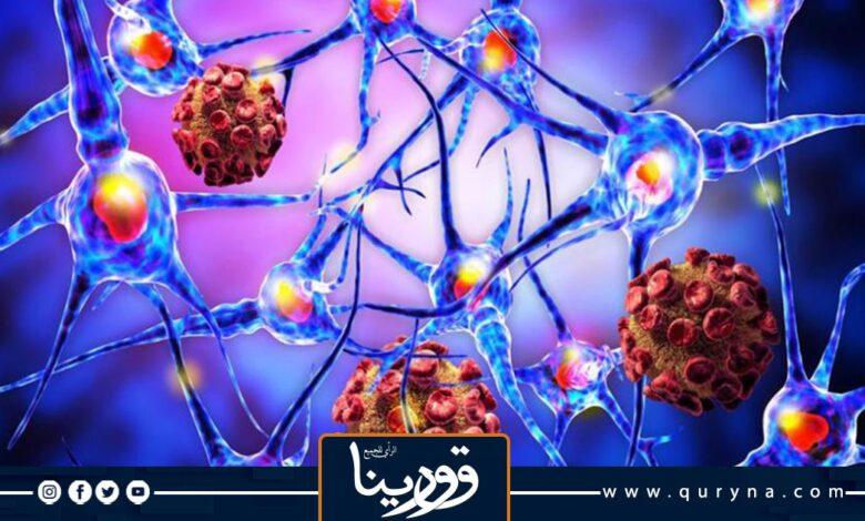 Photo of تونس تسجل 5359 إصابة جديدة بفيروس كورونا