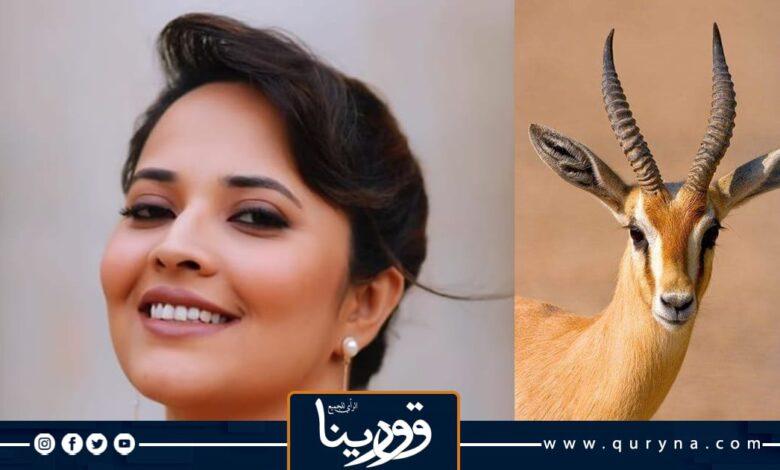 Photo of قصيدة شعبية للشعراء «فيصل بوغاليه» و «مراد البرعصي»