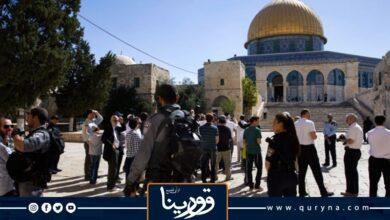 Photo of صهاينة يقتحمون ساحات «الأقصى» تحت حماية قوت الاحتلال